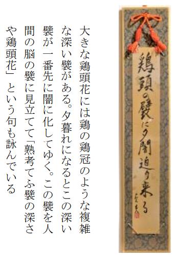 俳句 藤岡さん2.png